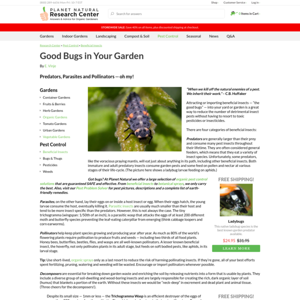 The Good Bugs: Beneficial Garden Insects | Planet Natural