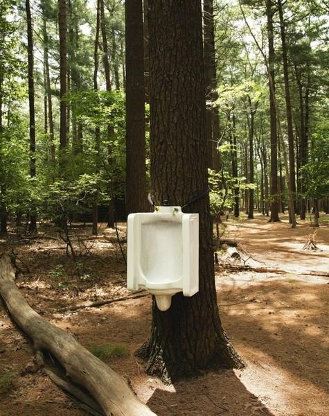 David Hammons, Toilet Tree