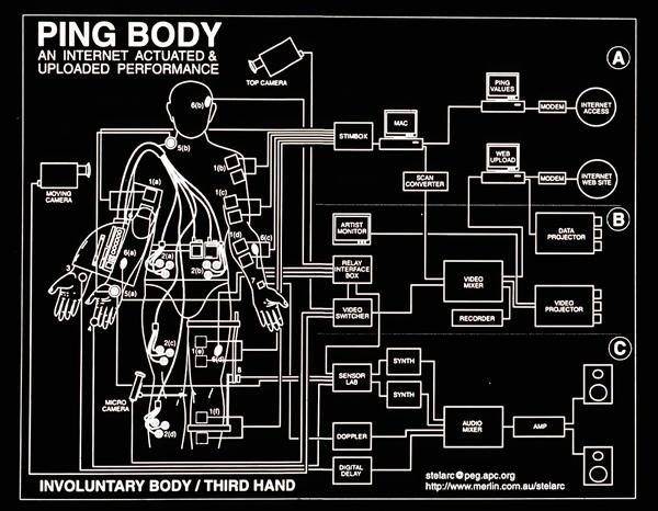 ping-body.jpg