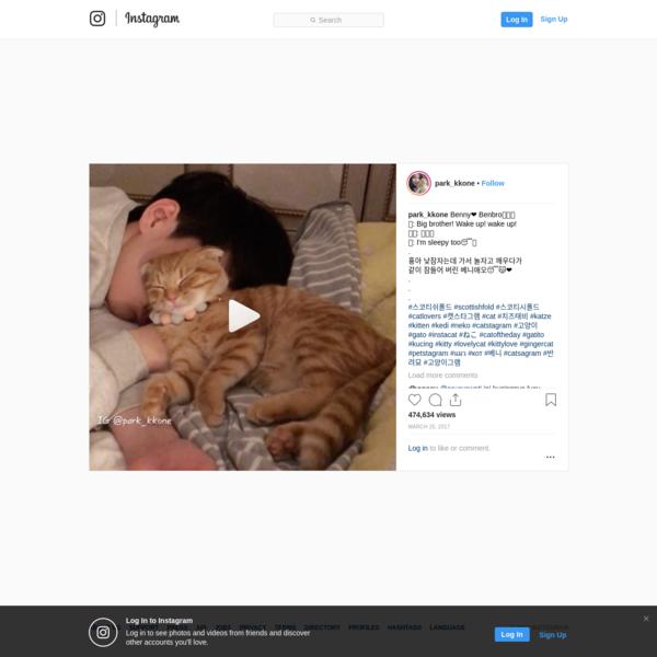 "80k Likes, 4,426 Comments - Benny Family (@park_kkone) on Instagram: ""Benny❤️ Benbro🐯👦🏻 🐯: Big brother! Wake up! wake up! 👦🏻: 💤💤💤 🐯: I'm sleepy too😴💤 . 횽아 낮잠자는데 가서 놀자고..."""