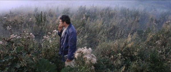 akira-kurosawa-on-watching-solaris-with-andrei-tarkovsky-www.cinematheia.com_.jpg