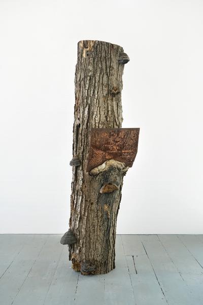 Charles Harlan, Tree, 2018