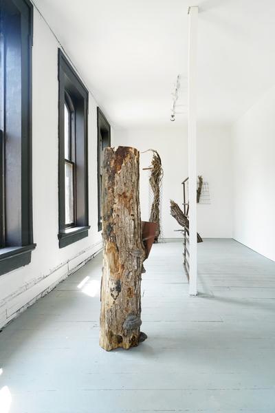 Charles Harlan, Trees, 2018