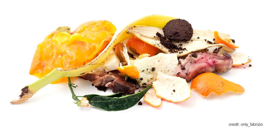 food_waste.png