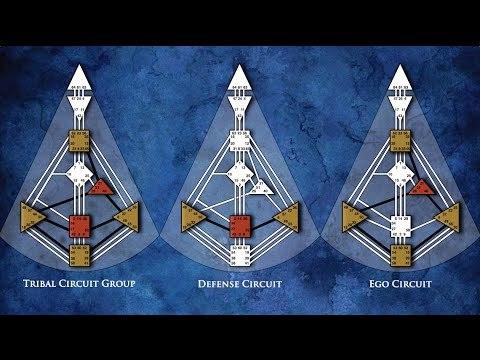Human Design: Circuitry & Beyond