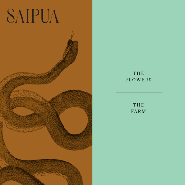 Saipua was founded in 2006. In the decade since, we have poured, cut and wrapped over 1 million bars of olive oil soap and traveled around the globe arranging flowers. As a small family business we often talk about how our most valuable assets are our people.