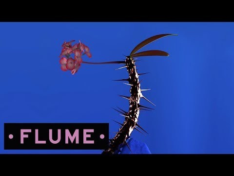 Flume - Fantastic feat. Dave Glass Animals