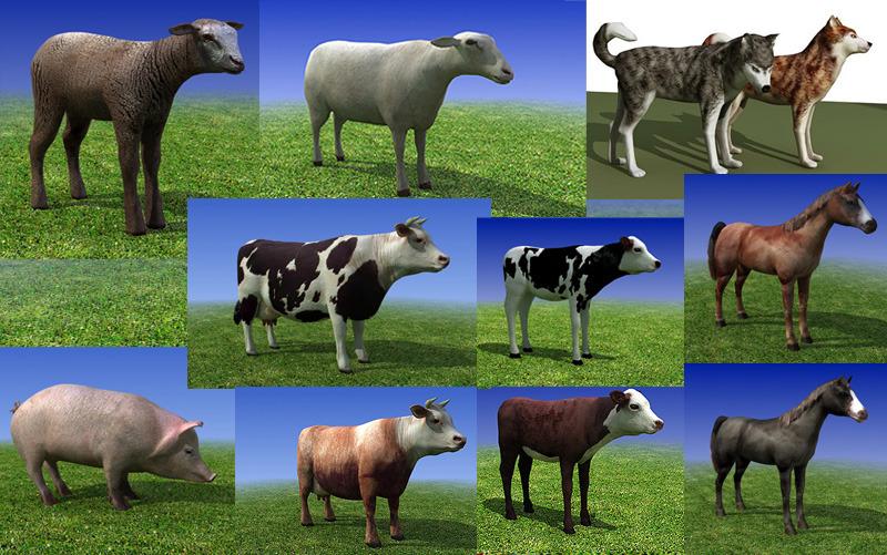 farm_collection_main.jpg