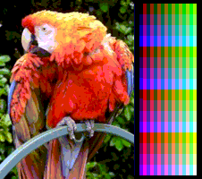 screen_color_test_msx2_screen8.png