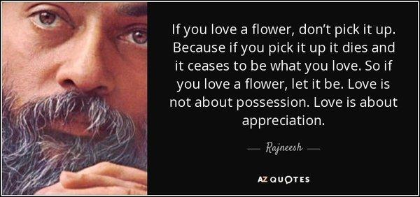 Rajnessh on Love