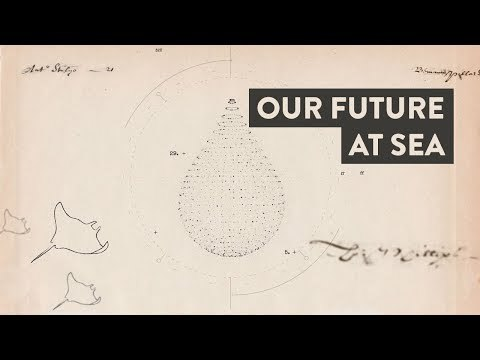 Our Future On the Sea: A Blue Frontiers x Berge Collaboration