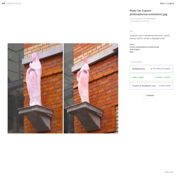 Are.na / Peter De Cupere - pinkmadonna-evolution1.jpg