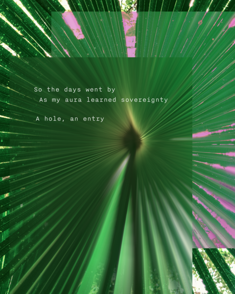 hole-entry@2x.png