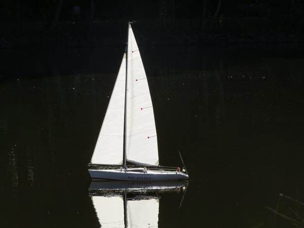 sailing-boat-3712180.jpg