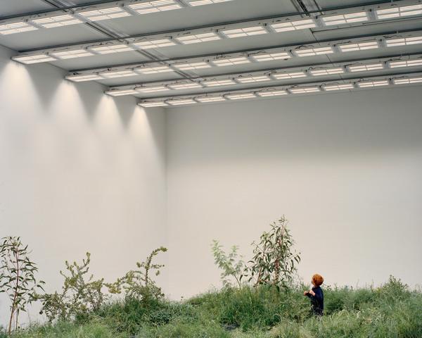 australian-pavilion-venice-architecture-biennale-grasslands-repair_dezeen_2364_col_4.jpg