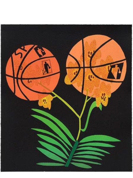 jonas-wood-double-basketball-orchid-state-ii-800x800.jpg
