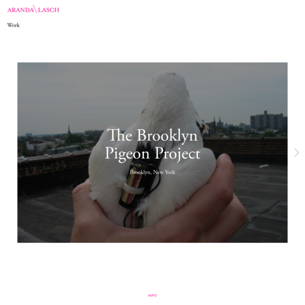 - Work - The Brooklyn Pigeon Project