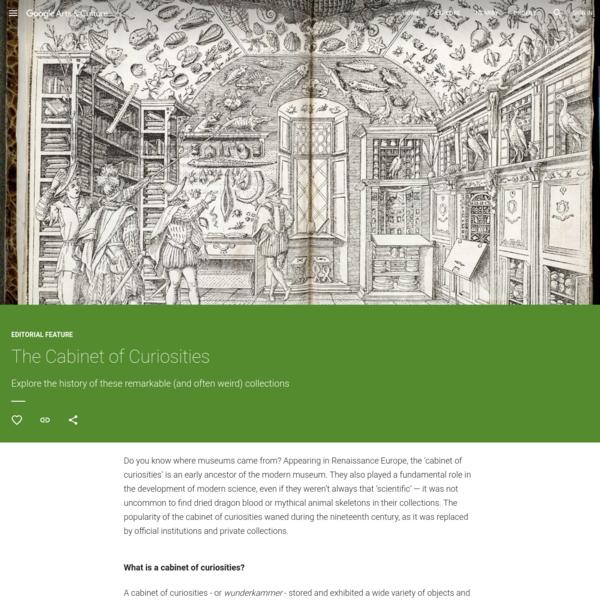 The Cabinet of Curiosities - Google Arts & Culture