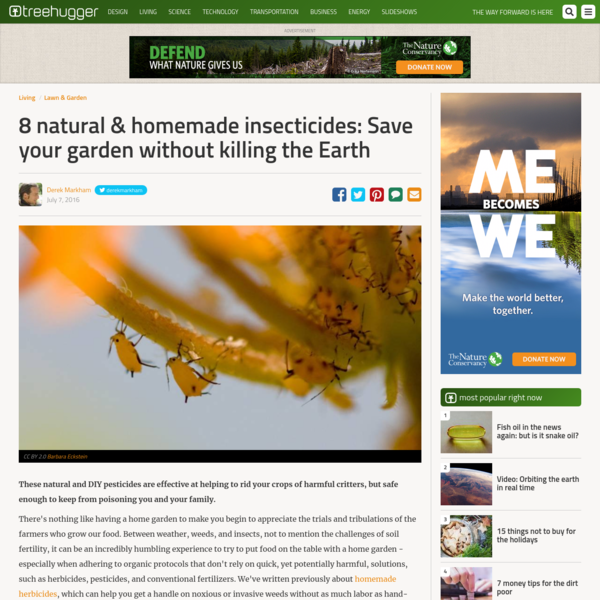 These natural and DIY pesticides are effective at helping to rid your crops of harmful critters, but safe enough to keep from poisoning you and your family. There's nothing like having a home garden to make you begin to appreciate the trials and tribulations of the farmers who grow our food.