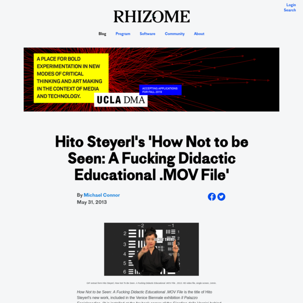 Hito Steyerl's 'How Not to be Seen: A Fucking Didactic Educational .MOV File'