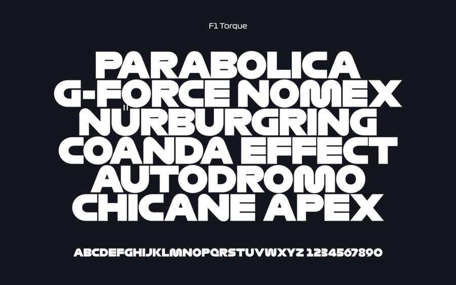 f1_type_torque.png