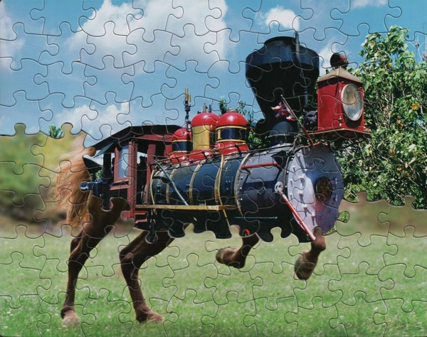 """This artist [Marcia Wiley] uses jigsaw puzzles, with the same die cut pattern, to make these terrific mashups"""
