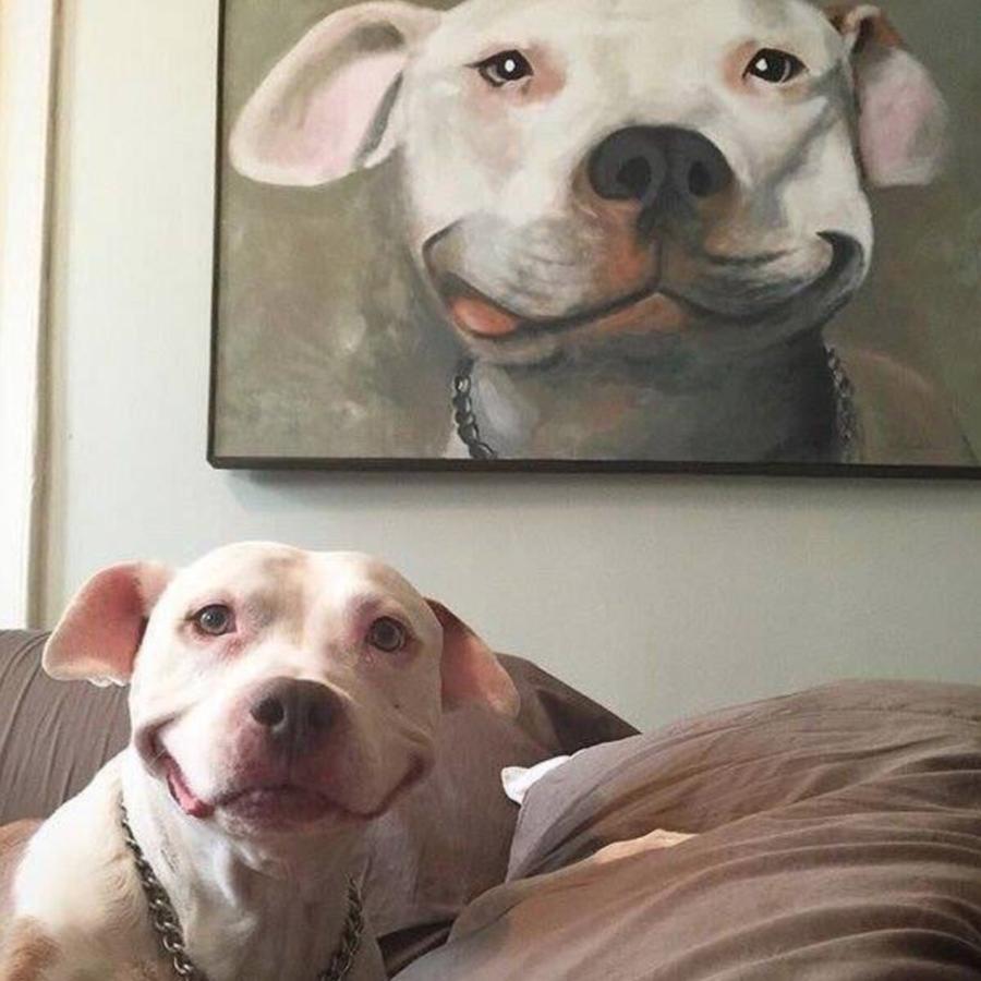 dog   painting of dog