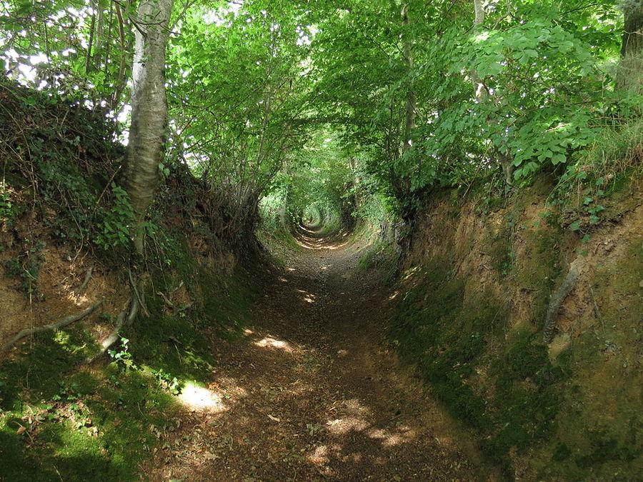 holloway-road-in-france.jpg