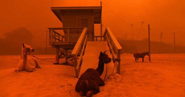 califonia-fire-12.jpg?crop=0px-78px-2000px-1051px-resize=1200-630