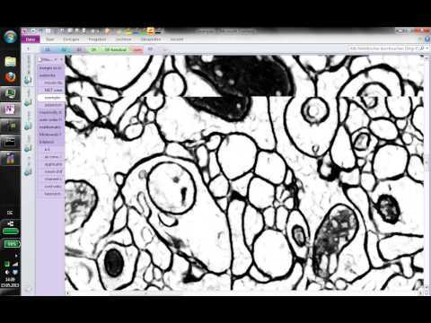 The Image Analysis Class 2013 by Prof. Fred Hamprecht. It took place at the HCI / Heidelberg University during the summer term of 2013. Part 01 -- Watershed - Minimum Spanning Tree - Extensions of the Watershed 00:43:44