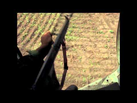 Concerning Violence - Official Trailer