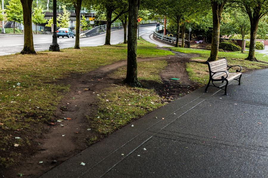 desire-paths.jpg