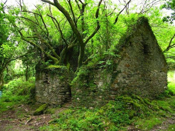 Abandoned_place_10.jpg