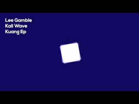 http://www.discogs.com/Lee-Gamble-Kuang-Ep/master/720331