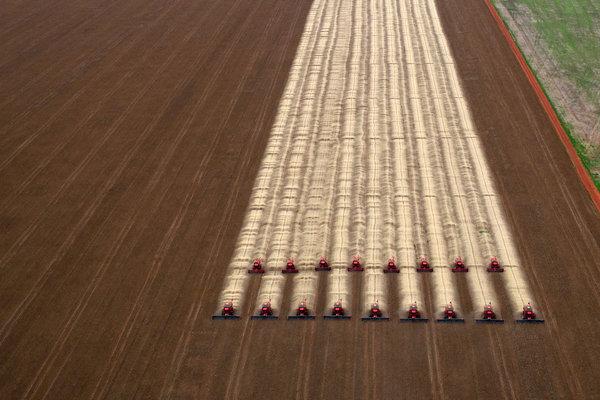 06cli-agriculture1-superjumbo.jpg?quality=90-auto=webp
