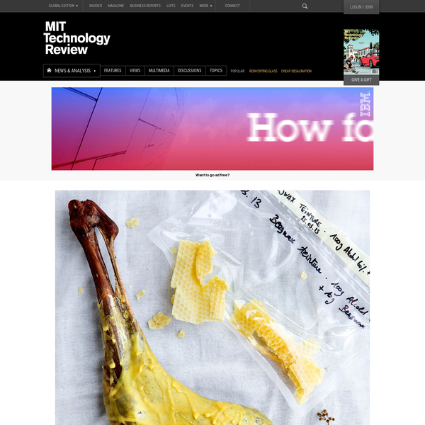 One Lab's Quixotic Quest for New Flavors | MIT Technology Review