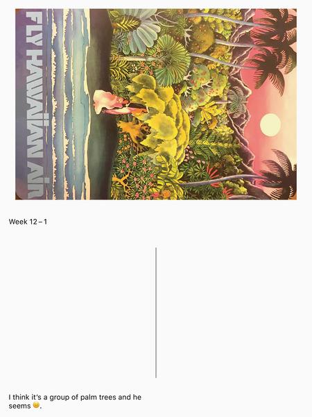 week-12-1.jpg