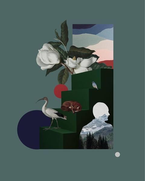 """Moja druga kolażowa kompozycja dla marki TOVA @tovafashion 🌿 Tytuł pracy to """"W słojach zamykam istnienia, licząc lata odstan..."""