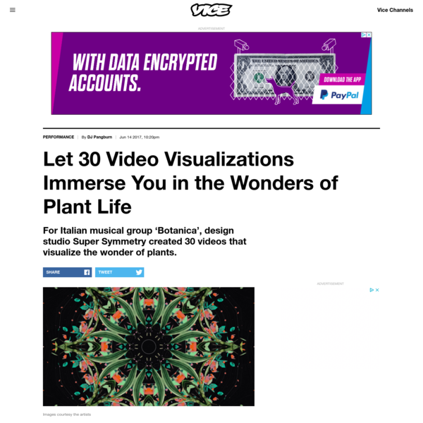 Let 30 Video Visualizations Immerse You in the Wonders of Plant Life