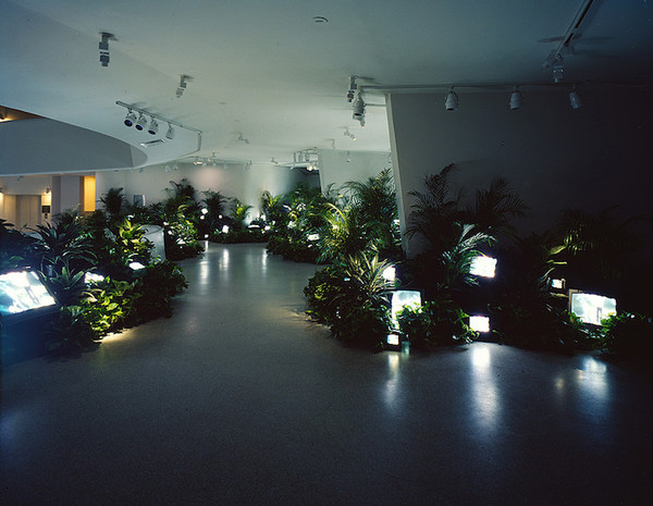Nam June Paik, TV Garden, 1974 (image shows 2000 version), video installation with color television sets and live plants (Solomon R. Guggenheim Museum) © Nam June Paik Estate