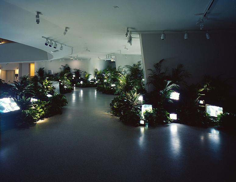 Nam June Paik, TV Garden, 1974 (image shows 2000 version), video installation with color television sets and live plants (Solomon R. Guggenheim Museum) © Nam June Paik Estate