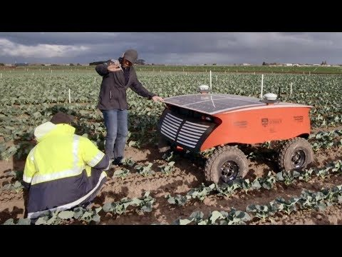 "RIPPA, a fully autonomous robot, can cover five acres a day on a solar charge - finding and exterminating pests and weeds on every single plant over the equivalent of four football fields. Are robots like RIPPA the future of farming? RIPPA stands for ""Robot for Intelligent Perception and Precision Application""."