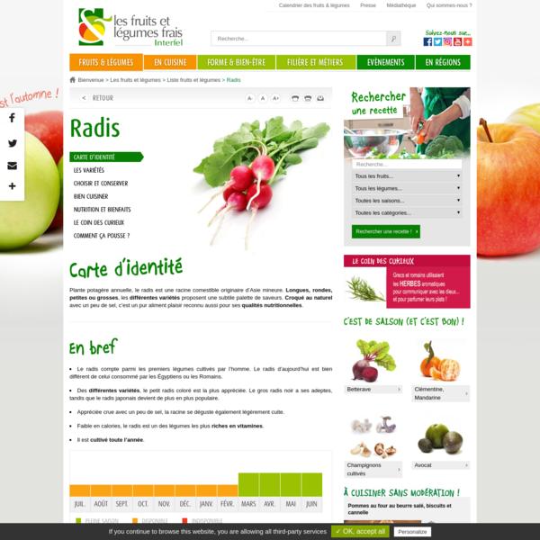 Le radis : présentation, production, consommation - Interfel - Les fruits et légumes frais