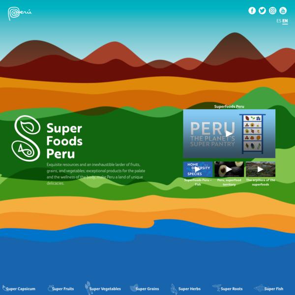 SUPER FOODS - HOME | Perú.Info