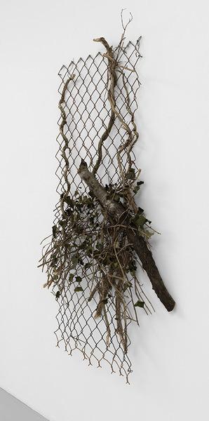 Charles Harlan, Tree, 2014