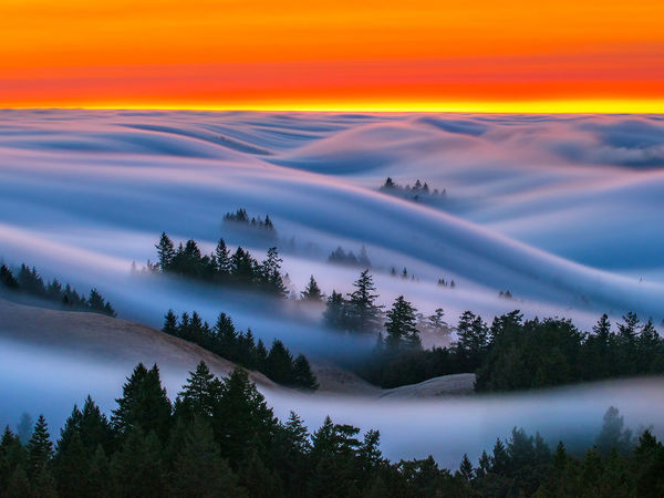 fog-waves-west-side-copy-583fab21ed77d__880.jpg