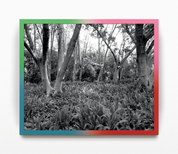 Colorama Paradise. Black and white photograph and polyurethane painting on frame. 52,5x42,5 cm. 2012