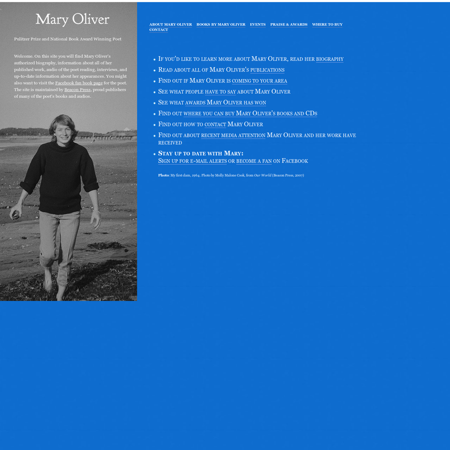 the summer day mary oliver