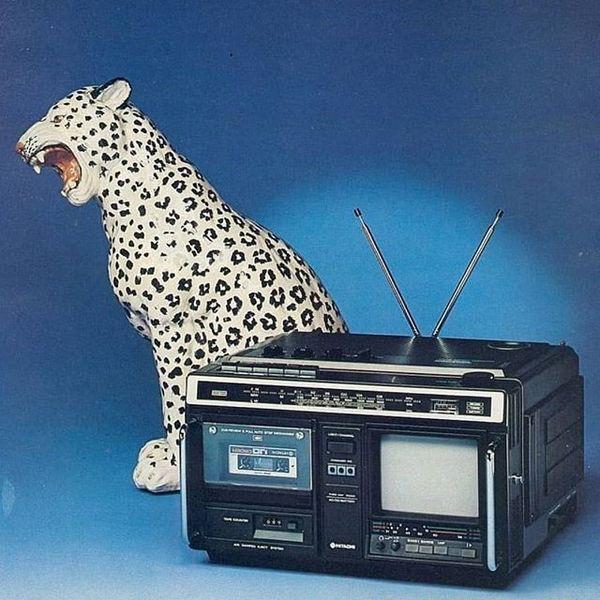 #tbt Wild Technology .. .. #office #art #retrotech #aesthetic #vaporwave #retro #artdeco #retrogame #80s #90s #corporatekits...