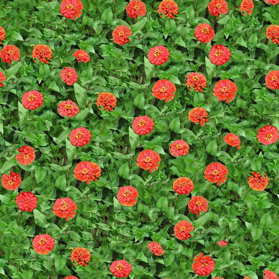 14_flowery-meadow-texture-seamless.jpg